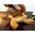 アジアン雑貨 バリ (ココナツの実 カメさん灰皿 L) 置物 オブジェ 小物入れ 灰皿 木製 エスニック