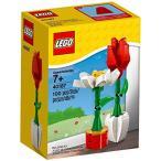レゴ LEGO Flower Display (40187) 100 Piece Set