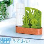 セキスイ 自然気化式ECO加湿器 うるおい ちいさな庭 グリーン・サボテン