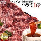 焼肉セット 肉。やわらかハラミ味噌だれ漬けメガ盛りセット(1kg)(バーベキュー BBQ)