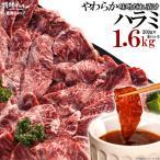 焼肉 焼肉セット 肉 やわらかハラミ味噌だれ漬け 超メガ盛セット 1.6kg 送料無料 バーベキューセット BBQ