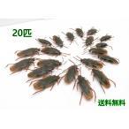 ショッピンググッズ 【送料無料】いたずらグッズ ジョークグッズゴキブリ 20匹セット