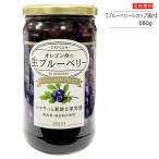 オレゴン産 ブルーベリー シロップ漬け 680g(固形量360g)