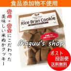 クッキー おいしい米ぬかクッキー 有機ココア味 80g 無添加 食品添加物不使用(有機・無農薬の米ぬか使用) 送料無料