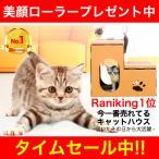 キャットハウス ダンボール 作り キャットタワー 猫