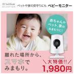 SoftBank SELECTION ベビーモニター SB-CM01-BAWF/W