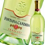 (白ワイン・イタリア)フォンタナ・カンディダ・テッレ・デ・グリーフィー・フラスカーティ・スペリオーレ・セッコ 2016 wine