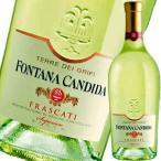 (白ワイン)フォンタナ・カンディダ・テッレ・デ・グリーフィー・フラスカーティ・スペリオーレ・セッコ 2017 wine