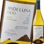 (白ワイン・アルゼンチン) アンデルーナ・シャルドネ wine