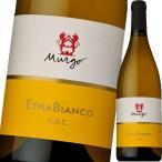 (白ワイン・イタリア) ムルゴ・エトナ・ビアンコ wine