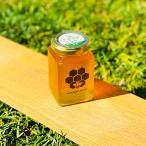 MINOKAMO HONEY 百花蜜 瓶 250g 生はちみつ 100% 純粋  美濃加茂ハニー 蜂屋のはちみつ