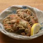 有明海産 マジャク(別名:アナジャコ) 10尾入 揚げればパリパリッと殻ごと美味しく! 冷凍品