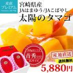 太陽のタマゴ 完熟マンゴー 宮崎 青秀 2Lサイズ (350g以上)×2玉