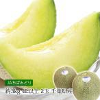 メロン 飯岡 貴味メロン タカミメロン 千葉 約3kg 4Lサイズ以上 2玉