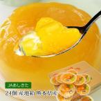 ショッピングゼリー ゼリー デコポンゼリー 24個入 熊本 送料無料 デコポン 果物 フルーツゼリー 高級 プレゼント