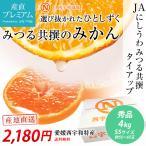 みかん 小玉 蜜る 秀品 5kg SSサイズ 70〜80玉 愛媛県 産地直送 送料無料