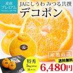 デコポン 糖度14度以上保証 贈答用 愛媛県 蜜る みかん 5kg でこぽん 特秀品 ミカン 2Lサイズ 20玉 送料無料