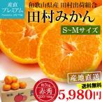 みかん 田村みかん 赤秀 約5kg S〜Mサイズ 50〜60個 和歌山県