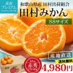 みかん 田村みかん 赤秀 約5kg 小玉 SSサイズ 70〜80個 和歌山県