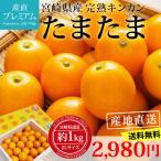 完熟きんかん たまたま 金柑 宮崎県 キンカン 約1kg Lサイズ 産地直送 送料無料