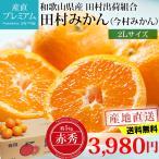 田村みかん(今村みかん) 5kg 赤秀 2Lサイズ 和歌山 有田みかん 送料無料