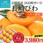 びわ 長崎びわ 秀品 約500g L〜3Lサイズ 8〜12玉 ハウス栽培 化粧箱 長崎県産