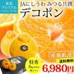 デコポン 糖度14度以上保証 贈答用 愛媛県 蜜る みかん 5kg でこぽん 特秀品 ミカン 3Lサイズ 18玉 送料無料