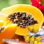 パパイヤ レモン2個付き 約4kg ハワイ産