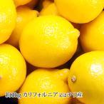 レモン カリフォルニア産又は チリ産 約3kg 30個