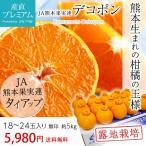 ショッピングみかん デコポン 熊本 5kg 無印 18〜20玉 みかん 露地栽培 お取り寄せ フルーツ 送料無料