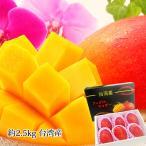 マンゴー 台湾マンゴー アップルマンゴー 台湾産 約2.5kg 5〜6玉