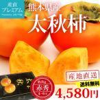 柿 太秋柿 赤秀 約2kg 4〜6玉 熊本県