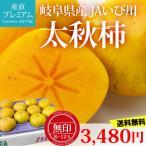 柿 太秋柿 無印 8〜12玉 岐阜県