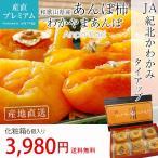 あんぽ柿 わかやまあんぽ 干し柿 無添加 化粧箱 6個入 和歌山