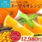 ネーブルオレンジ 約15kg 56〜72玉 アメリカ