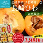 びわ 長崎びわ 約250g×4パック M〜2Lサイズ 露地栽培 長崎県産