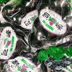 ゼリー 巨峰ひとくち玉ゼリー 5袋セット(11玉/1袋)