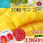 完熟宮崎マンゴー 2Lサイズ (350g以上/1玉)×2玉 宮崎県