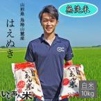 無洗米 令和元年産 いいあん米 はえぬき 白米 10kg(5kg×2袋) 山形 お米