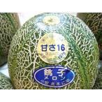 甘さ16 銚子メロン アムスメロン 日本農業賞受賞 3〜6個入り 約5kg 送料無料 贈答用 訳あり品ではございません