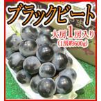 種なしブドウ ブラックビート 1房600g以上 大粒黒葡萄 送料無料 ご予約 8月中の発送 訳あり品ではございません