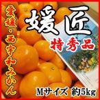 みかん 愛媛 西宇和産 媛匠 Mサイズ 5kg 箱買い 特秀品 ご予約 送料無料 高級柑橘 訳あり品ではございません