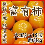 柿 富有柿 岐阜産 大玉4L〜2L限定 8〜12玉3kg 送料無料 贈答用 訳あり品ではございません