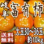 岐阜 富有柿 本貯蔵 柿 大玉30〜36玉10kg 個別パック 高級品種 送料無料 ご予約 訳あり品ではございません