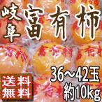 柿子 - 柿 富有柿 本貯蔵 個別真空パック 送料無料 岐阜産 36〜42玉10kg 贈答用 訳あり品ではございません