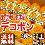 熊本産 デコポン 20〜24玉 5kg JA熊本果実連 送料無料 高級みかん かんきつ類 贈答...