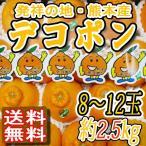熊本デコポン ja熊本果実連 8〜12玉入り 2.5kg 低温貯蔵 柑橘類 贈答用 送料無料 訳あり品ではございません