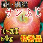 りんご 【サンふじ】 特秀品 信州・長野産 10〜20玉4kg お歳暮 お年賀 ご贈答 訳あり品ではございません