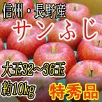 りんご 【サンふじ】 特秀品 信州・長野産 名産地厳選 32〜36玉10kg 訳あり品ではございません