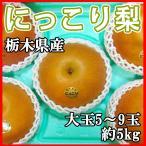 梨 にっこり 栃木県産 大玉5〜9玉 5kg 送料無料 高級梨 希少品種 訳あり品ではございません